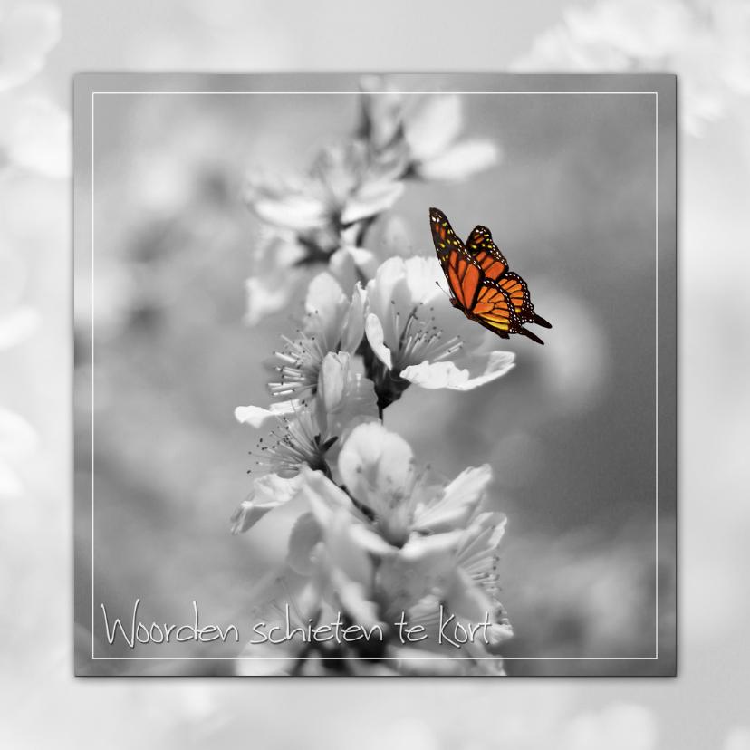 Condoleancekaarten - Vlinder op Bloesem - deelneming