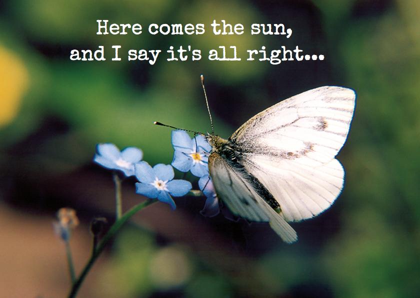 Condoleancekaarten - vlinderkaart sterkte ME