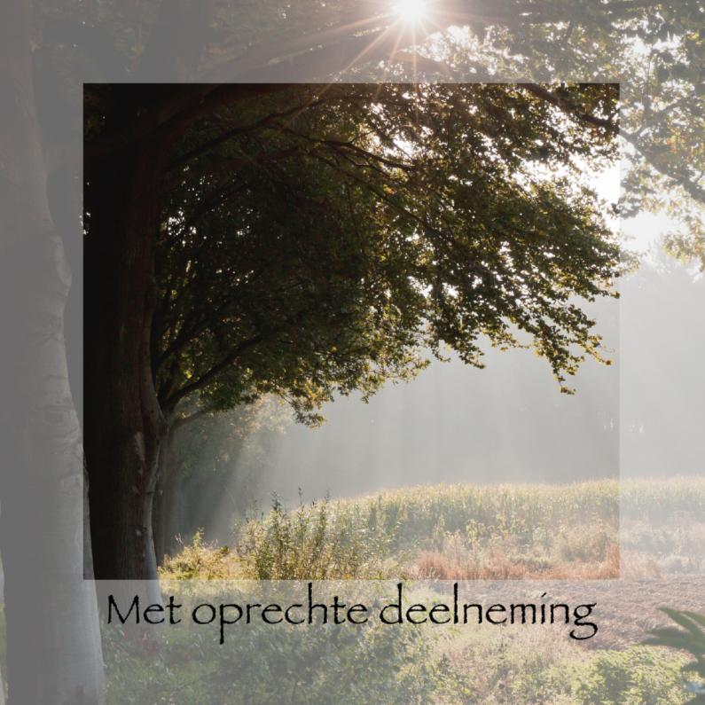 Condoleancekaarten - Vroege morgen in de herfst