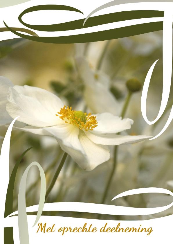 Condoleancekaarten - Zwierige japanse anemoon