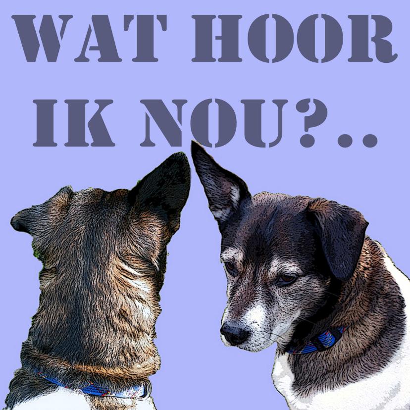 Dierenkaarten - Dieren hond  Wat hoor ik nou