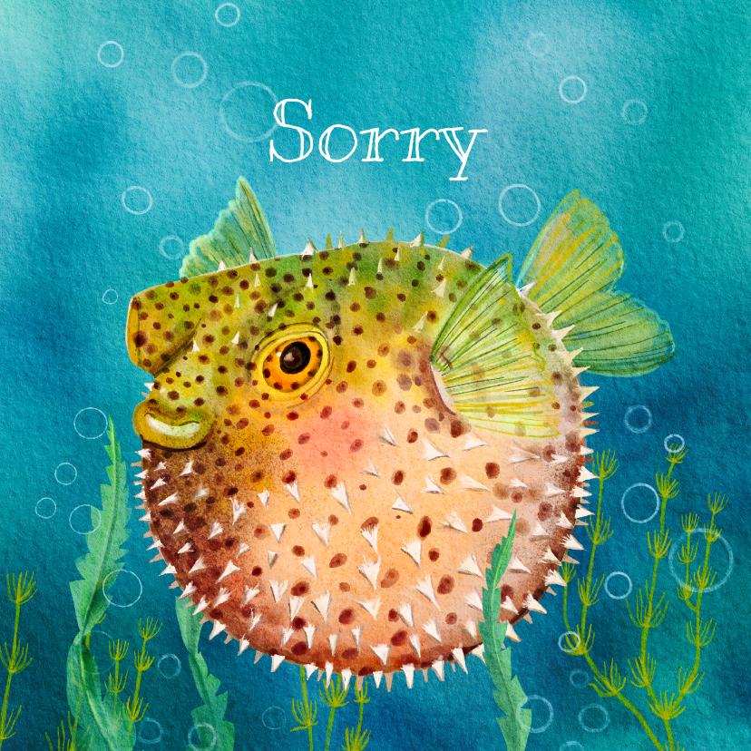 Dierenkaarten - Dierenkaart bied excuses aan met deze grappige kogelvis