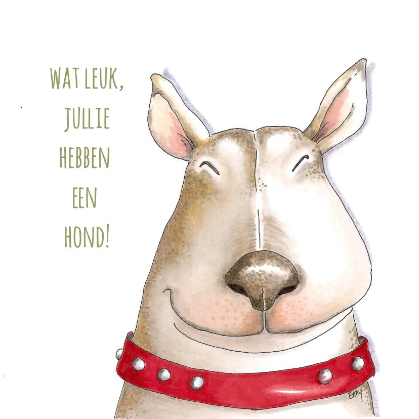 Dierenkaarten - Dierenkaart - hoera jullie hebben een hond