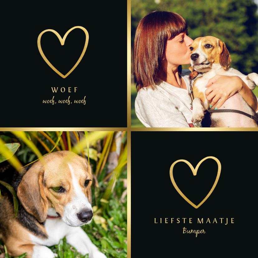 Dierenkaarten - Dierenkaart met 2 foto's en goud