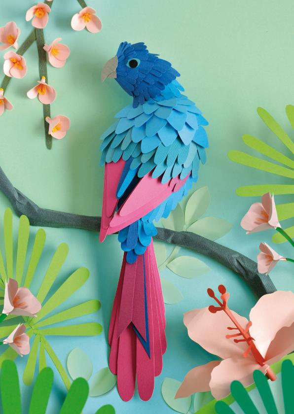 Dierenkaarten - Dierenkaart met papegaai