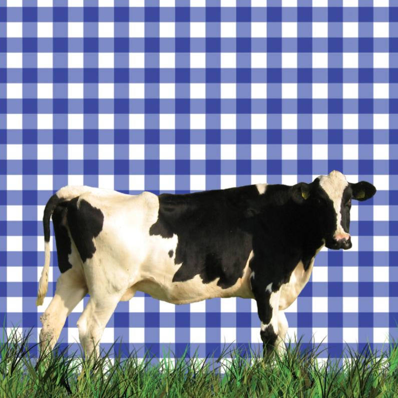 Dierenkaarten - Hollandse koe in het gras
