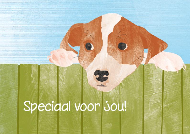 Dierenkaarten - Hondje speciaal voor jou