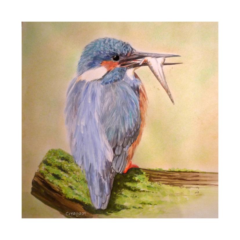 Dierenkaarten - ijsvogel met visje - kunstkaart