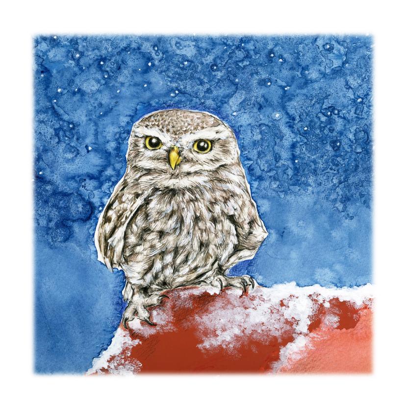 Dierenkaarten - Kerstkaart Steenuiltje