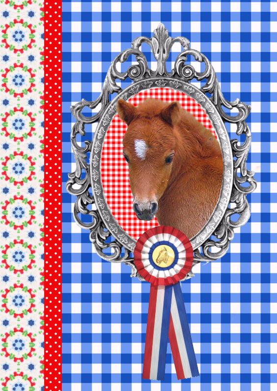 Dierenkaarten - Little Pony