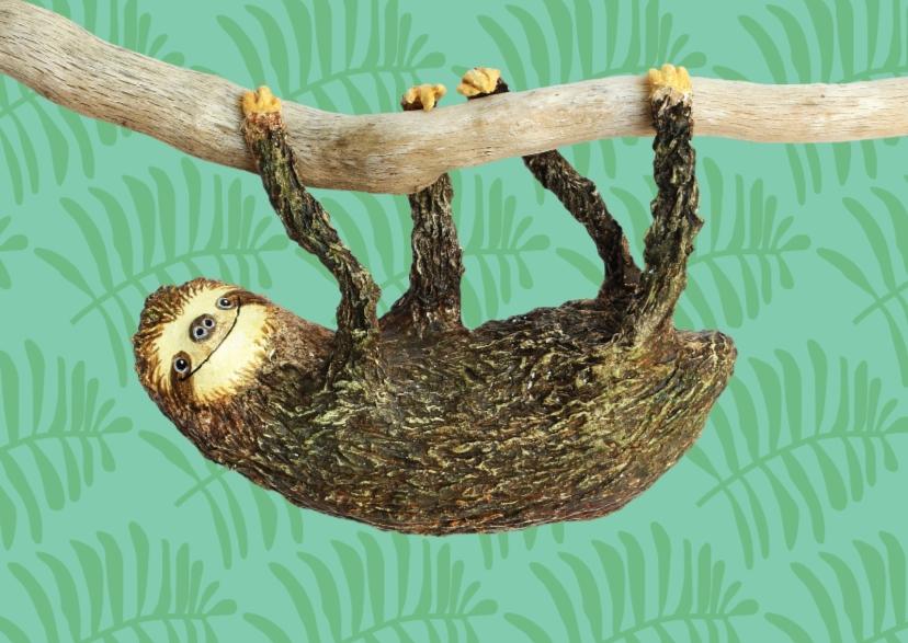 Dierenkaarten - Luiaard hangt aan een tak