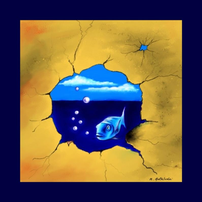 Dierenkaarten - Nathalie Antalvari Curious Fish