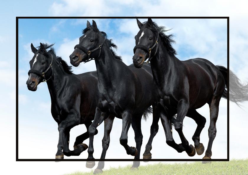 Dierenkaarten - Paardenkaart in the picture