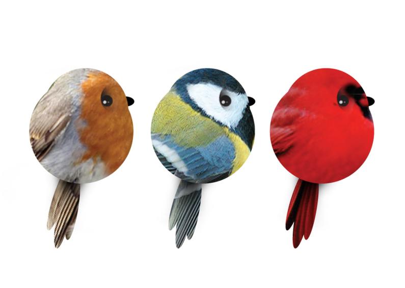 Dierenkaarten - Vogeltjes piep