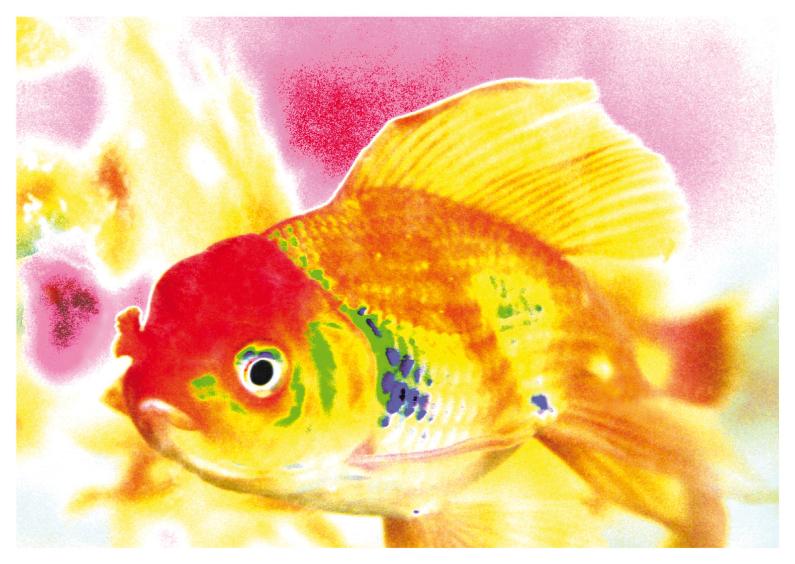 Dierenkaarten - Vrolijke vis - OTTI