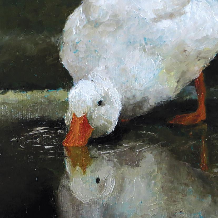 Dierenkaarten - Witte eend in olieverf - LS