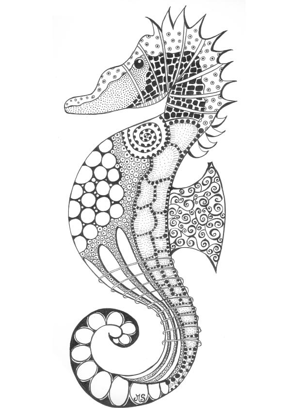 Dierenkaarten - Zeepaard