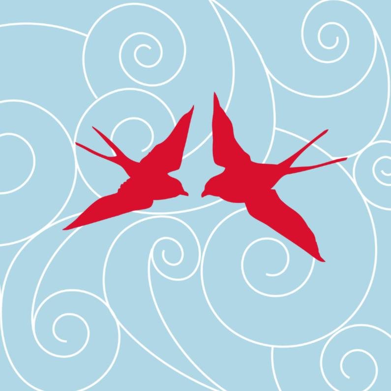 Felicitatiekaarten - Birdy love