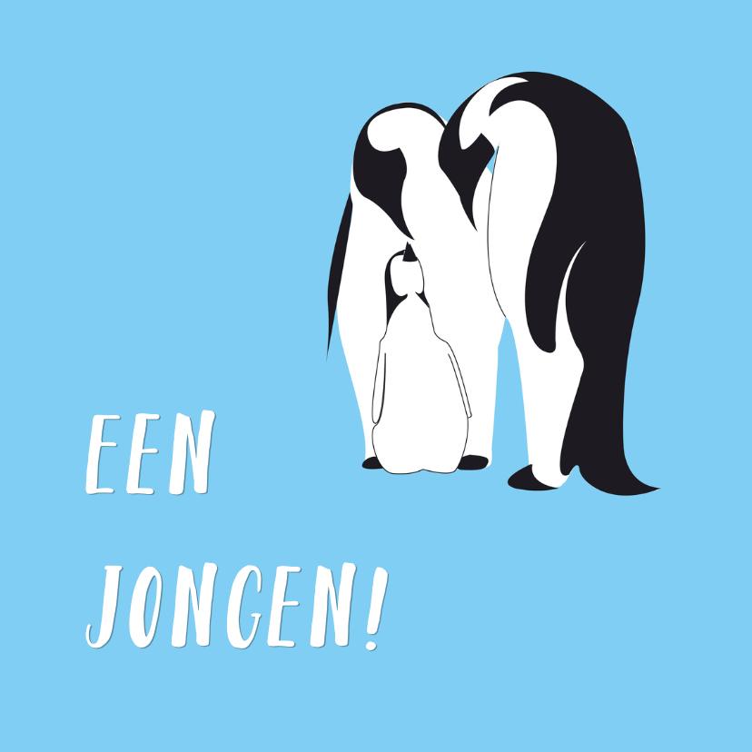 Felicitatiekaarten - Een jongen - pinguinkaart