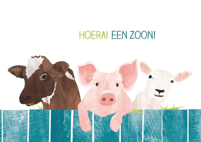 Felicitatiekaarten - Een zoon met koe varken en schaap