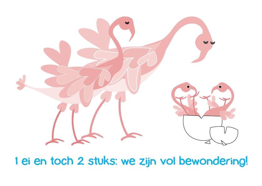 Geboortekaartjes - Eeneiige tweeling flamingo - L