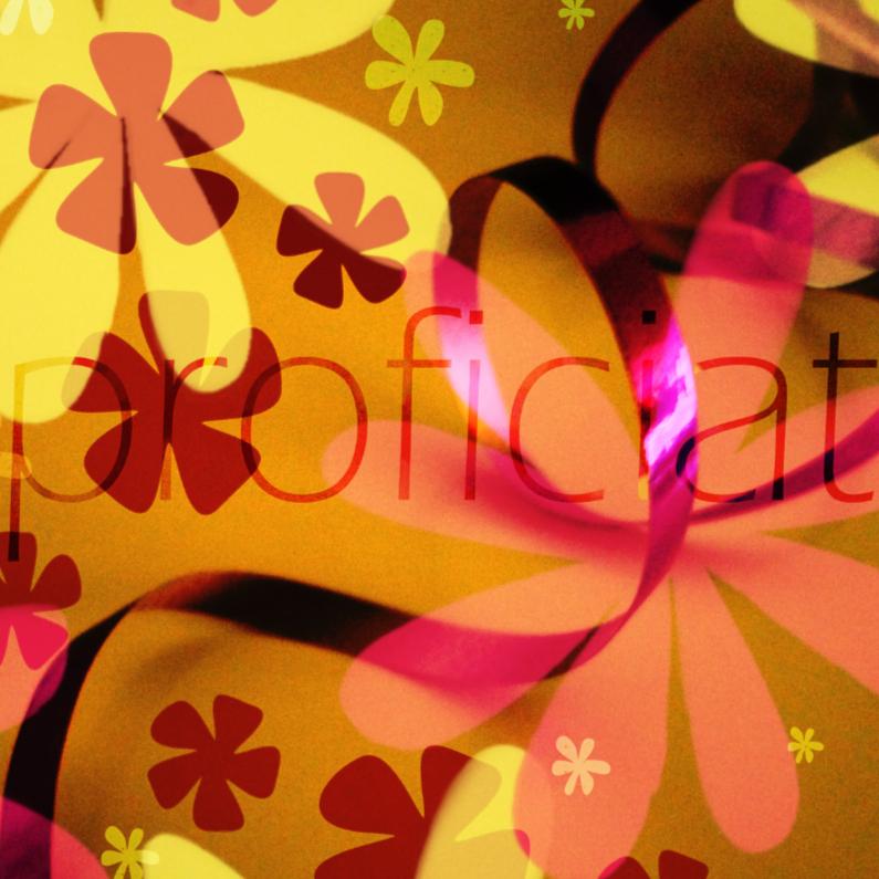Felicitatiekaarten - Feestelijk proficiat