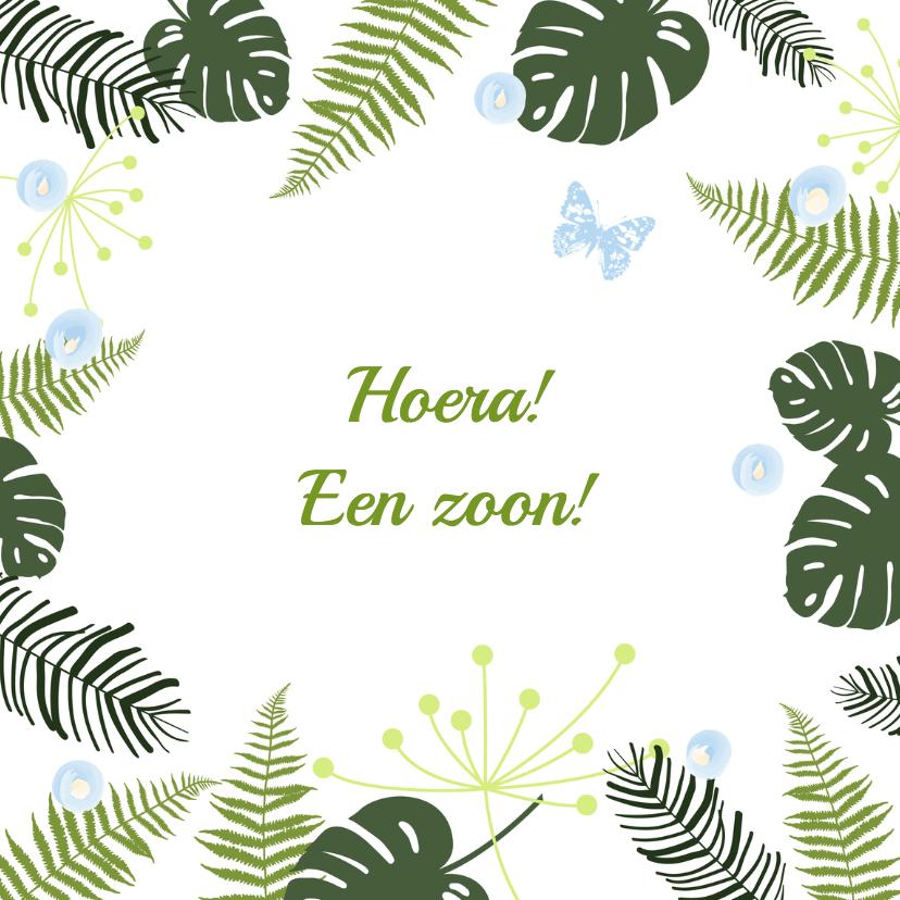 Felicitatiekaarten - Felicitatie - Botanisch jongen