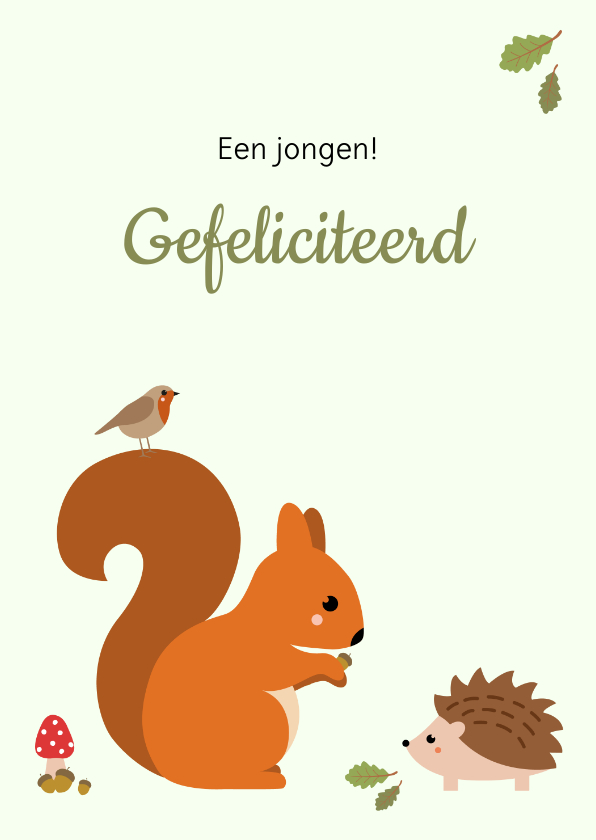 Felicitatiekaarten - Felicitatie - Eekhoorn met egel en vogel