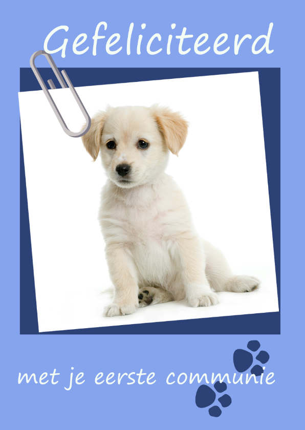 Felicitatiekaarten - Felicitatie eerste communie pup