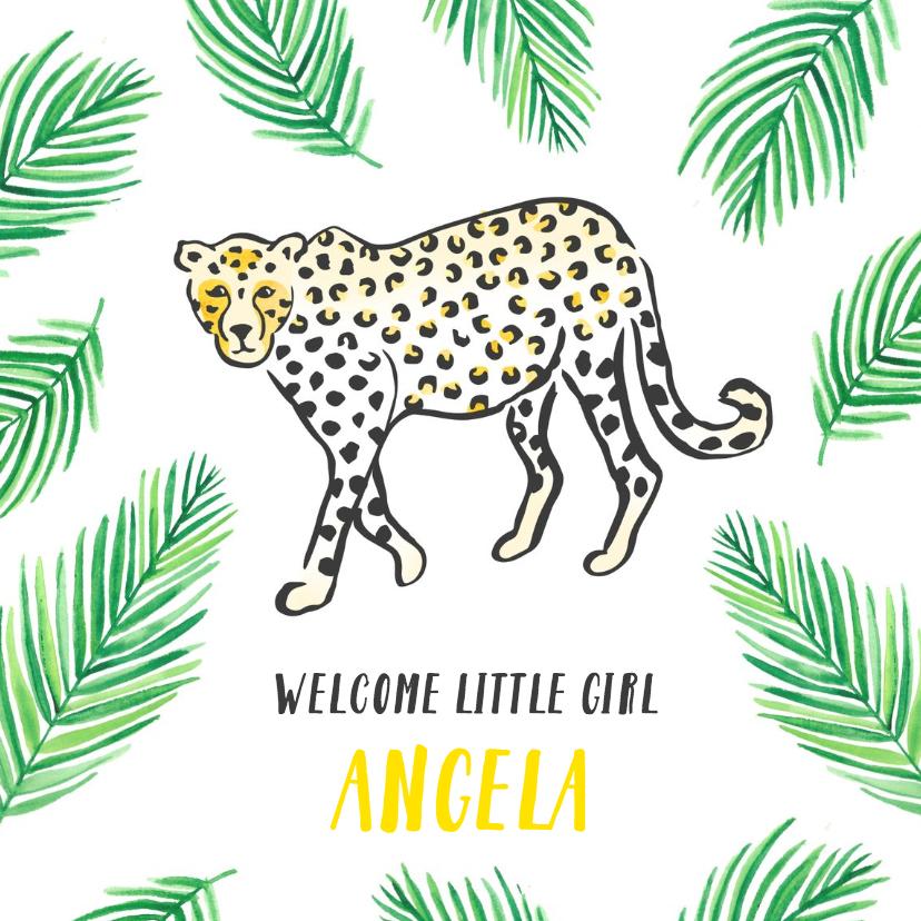 Felicitatiekaarten - Felicitatie geboorte jaguar