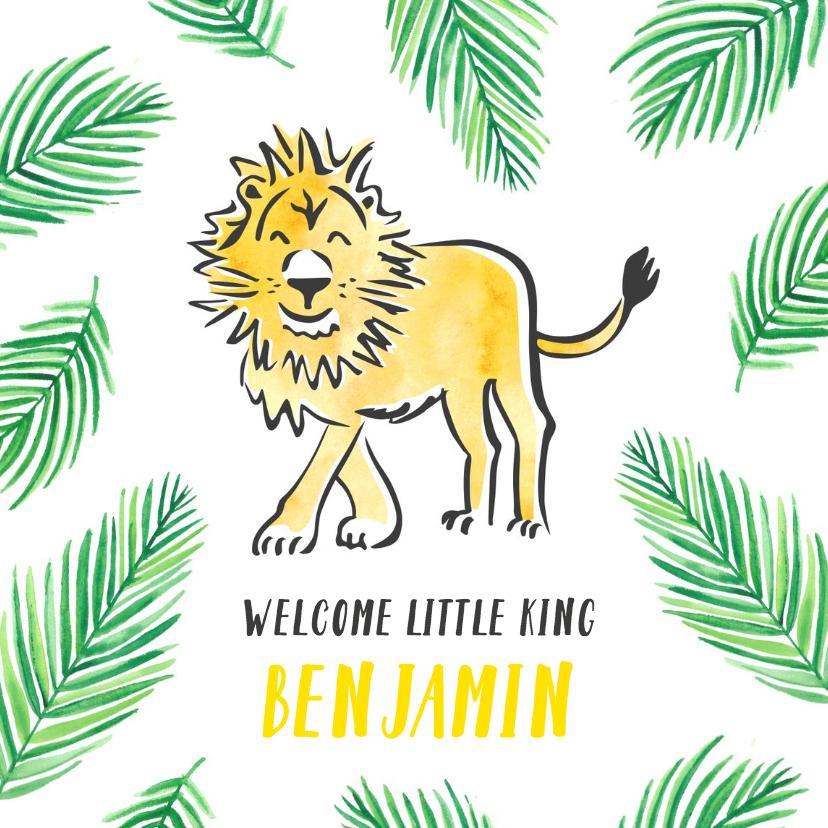 Felicitatiekaarten - Felicitatie geboorte kleine leeuw