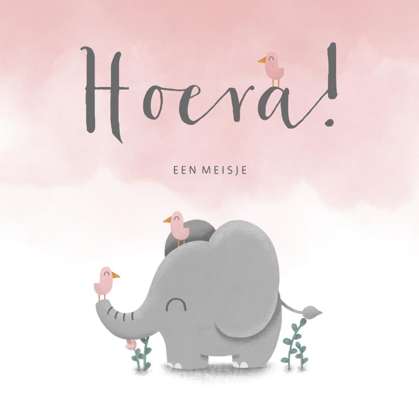 Felicitatiekaarten - Felicitatie geboorte met waterverf, olifant en vogeltjes