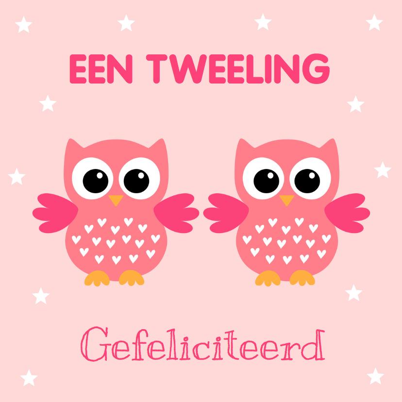Felicitatiekaarten - Felicitatie geboorte tweeling meisjes uiltjes