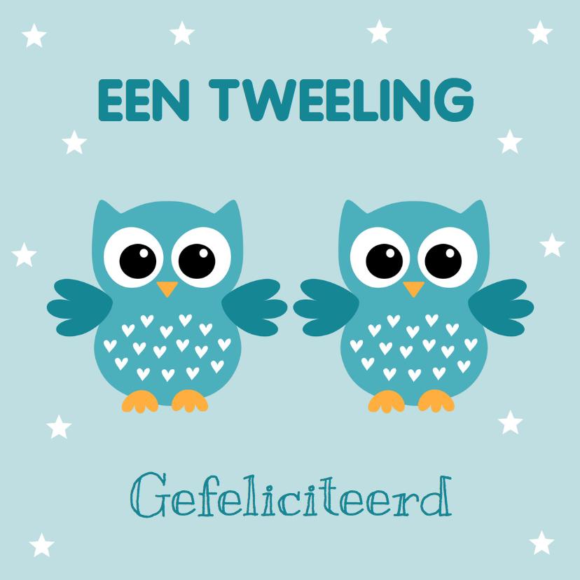 Felicitatiekaarten - Felicitatie geboorte tweeling uiltjes jongens