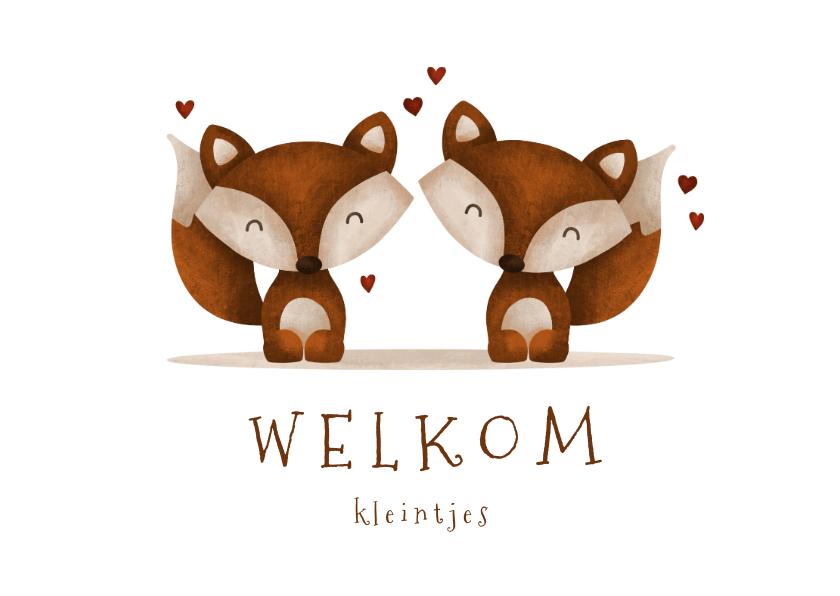 Felicitatiekaarten - Felicitatie geboorte tweeling vosjes met hartjes lief