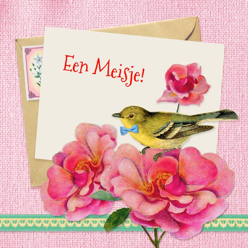 Felicitatiekaarten - Felicitatie geboorte vogeltje