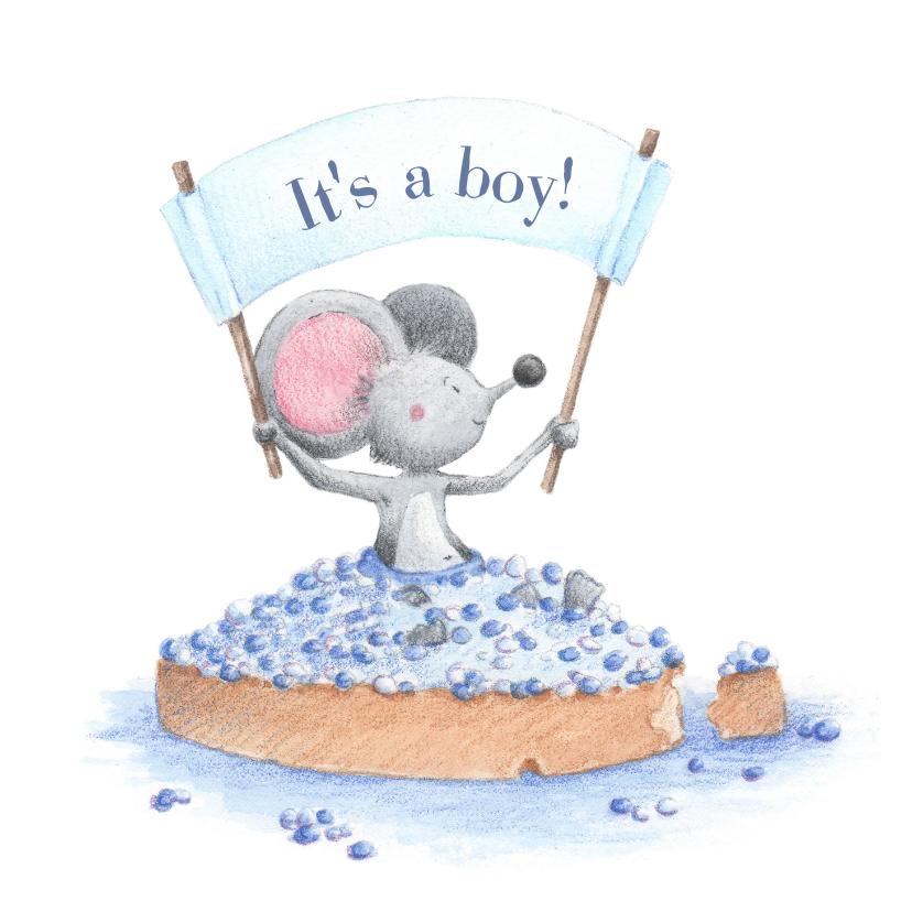 Felicitatiekaarten - Felicitatie geboorte zoon beschuit met muisjes