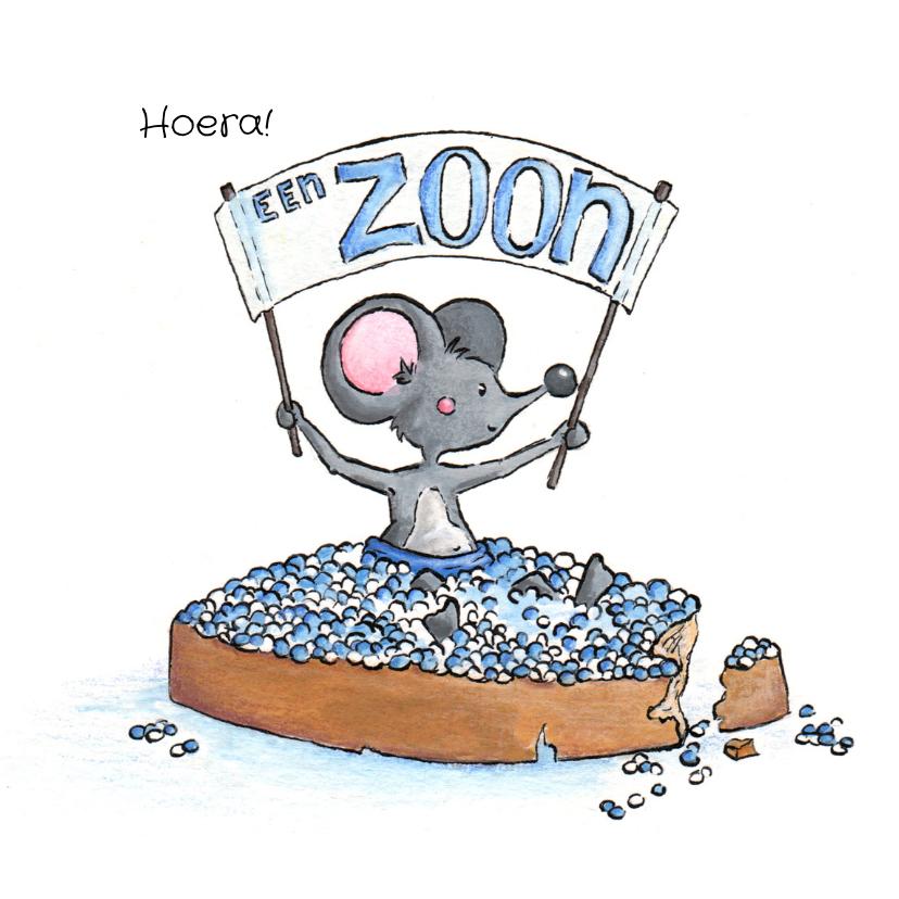 Felicitatiekaarten - Felicitatie geboorte zoon met muisjes