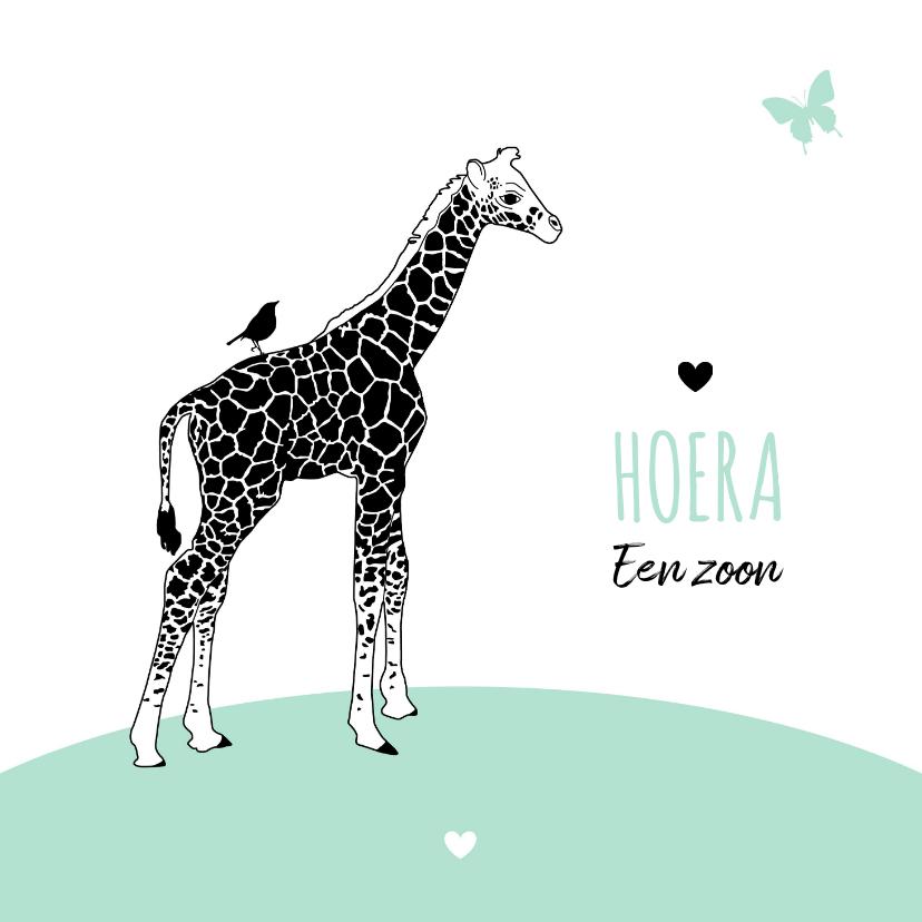 Felicitatiekaarten - Felicitatie - Giraf met vlinder en vogeltje