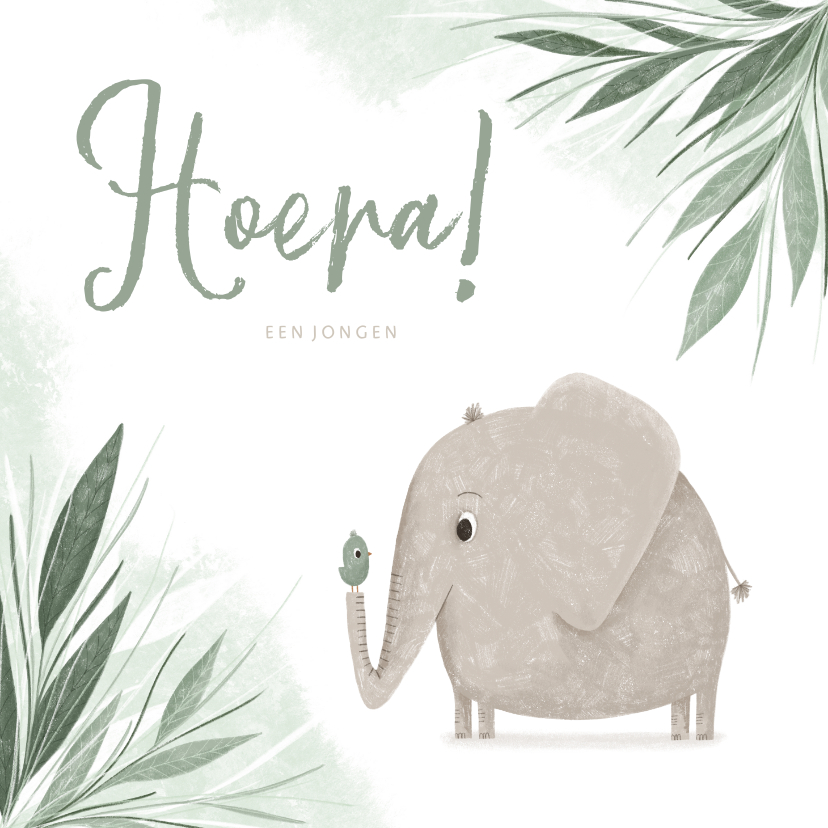 Felicitatiekaarten - Felicitatie hoera een jongen jungle olifantje met vogel