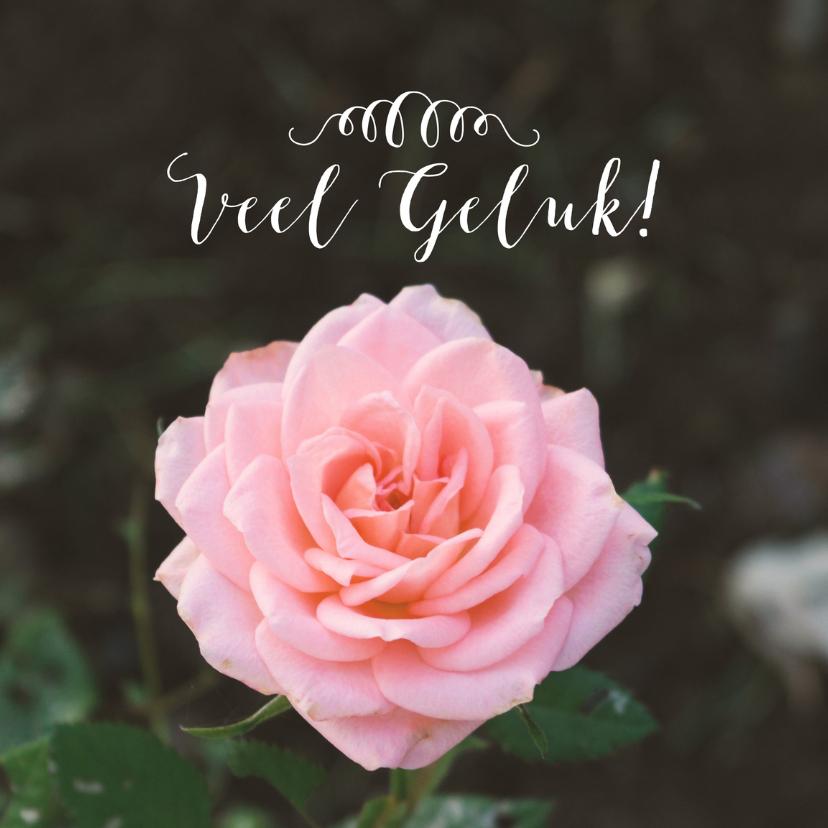 Felicitatie huwelijk roos felicitatiekaarten kaartje go