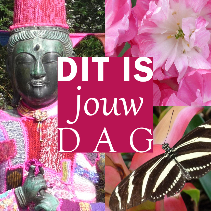 Felicitatiekaarten - Felicitatie Jouw Dag Boeddha