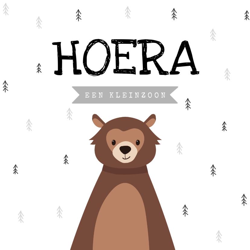 Felicitatiekaarten - Felicitatie kaart kleinzoon hip beer stoer