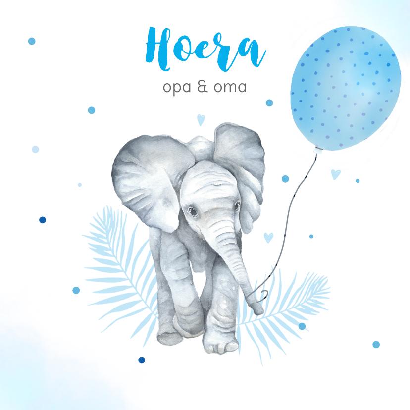 Felicitatiekaarten - Felicitatie kleinkind jongen olifantje ballon