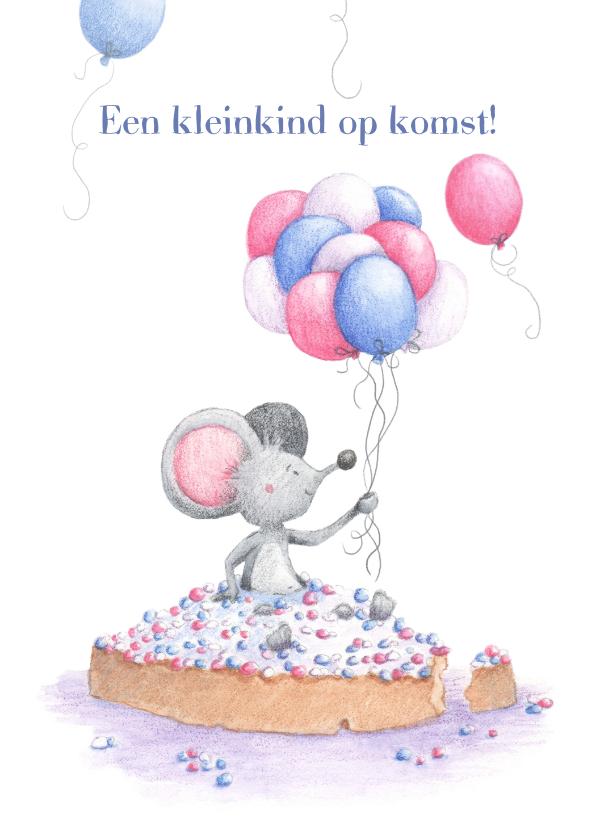 Felicitatiekaarten - Felicitatie kleinkind op komst, beschuit met muisjes