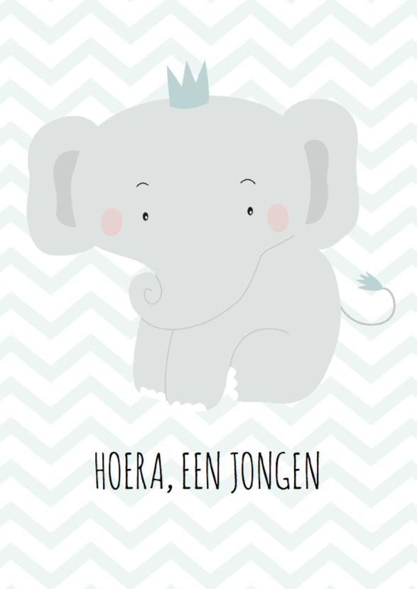 Felicitatiekaarten - Felicitatie olifantje jongen