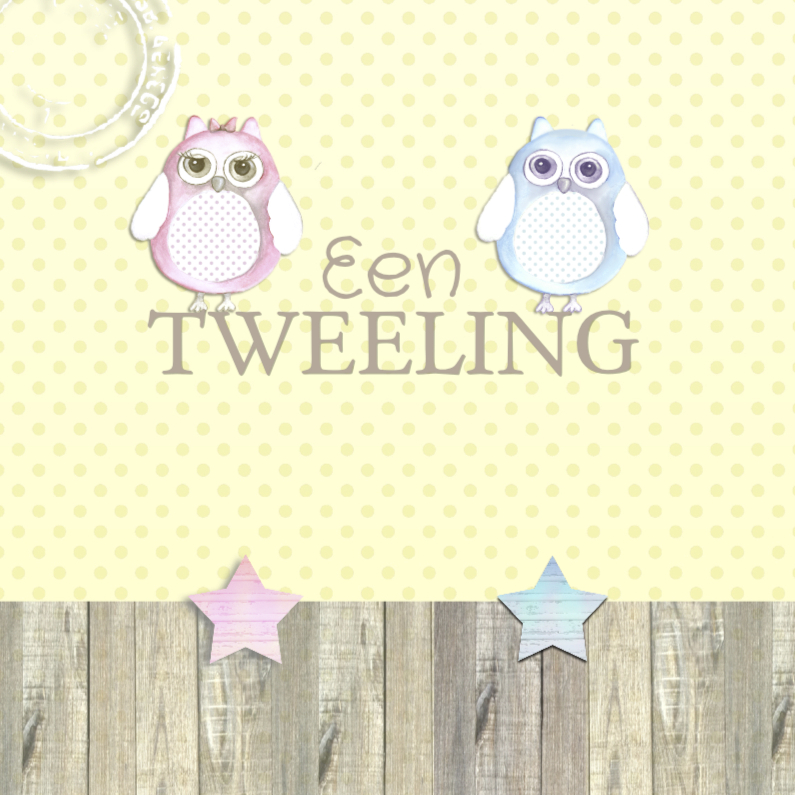 Felicitatiekaarten - Felicitatie tweeling uil
