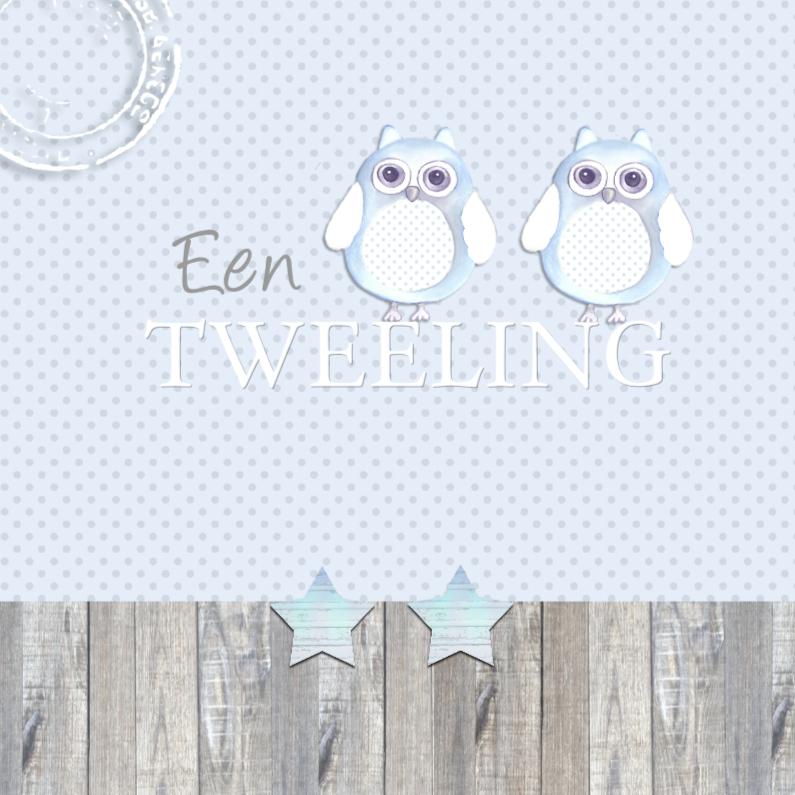 Felicitatiekaarten - felicitatie tweeling uiltjes