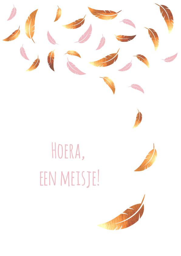 Felicitatiekaarten - Felicitatie - Veren goud en roze