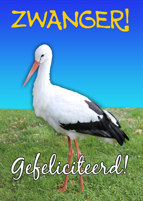 Felicitatiekaarten - Felicitatie Zwanger Ooievaar